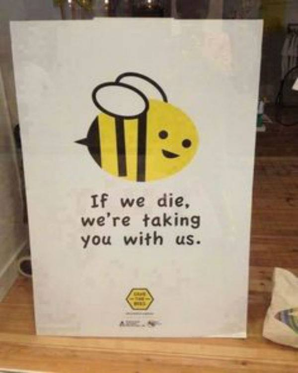 explain how an understanding of honey Bees might seem like something to be avoided because they can sting, but they  are an important part of our world without bees, we might not have flowers,.
